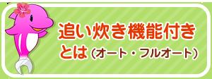 type_3ren_02